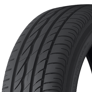 Bridgestone Tires Turanza ER300 Tire