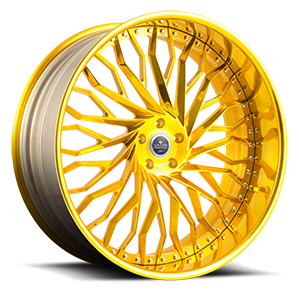 Fantasia 5 High Polish Gold