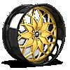 Motivo Gold with Black Lip 5 lug