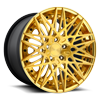 QLB Brushed Gold Gloss Clear/Hi Luster Gold Lip 5 lug
